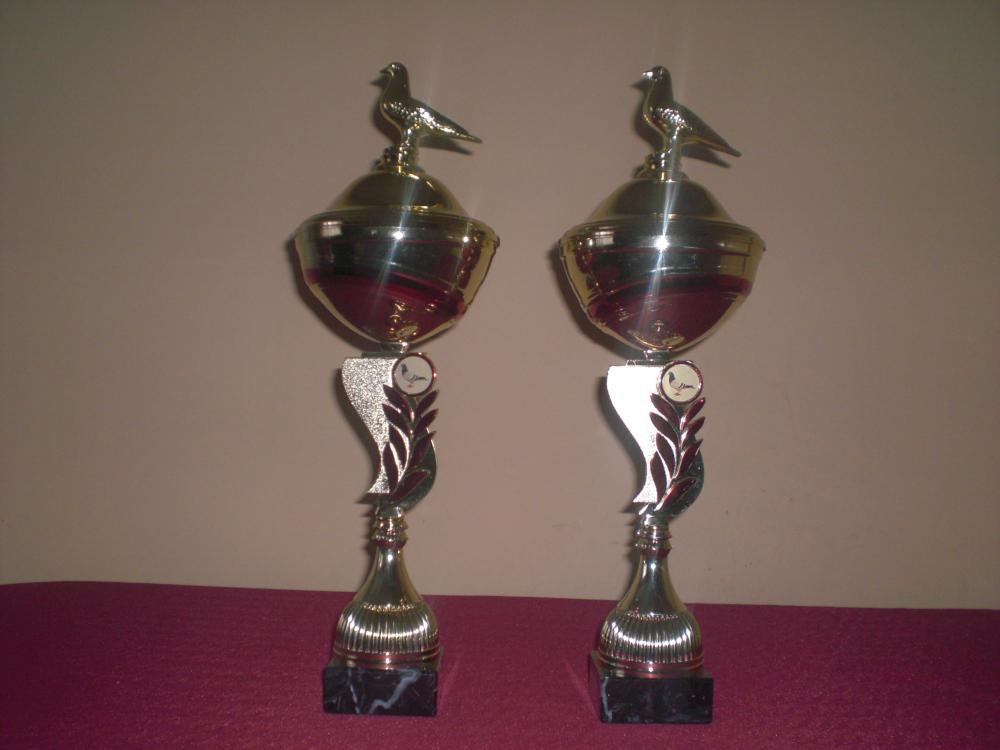 Nagrody Sekcji Gralewo/Stacja 2014
